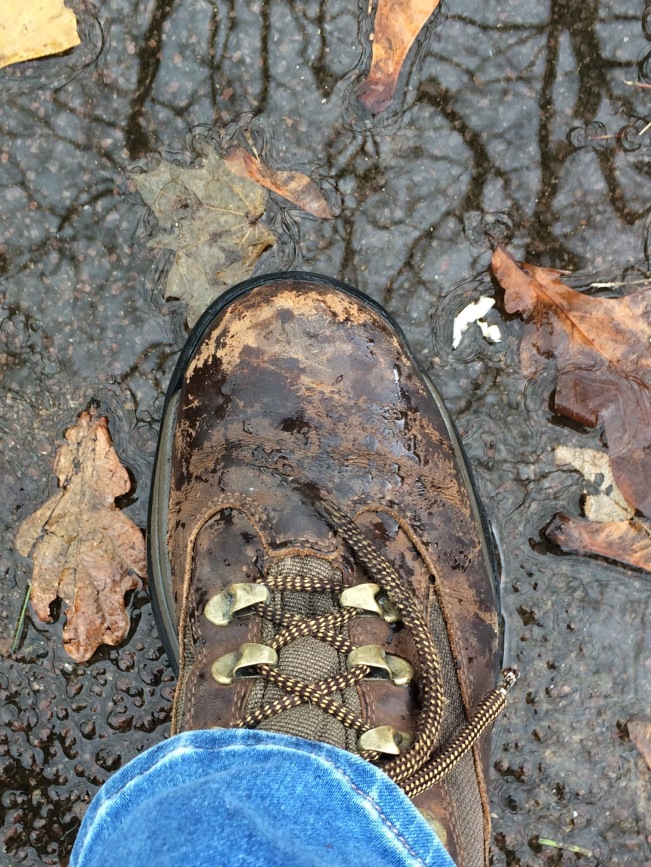 Boot Near